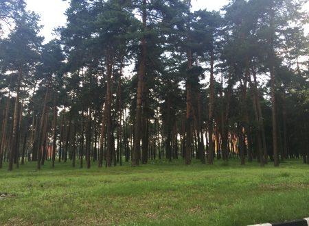 Bryansk, un ricordo